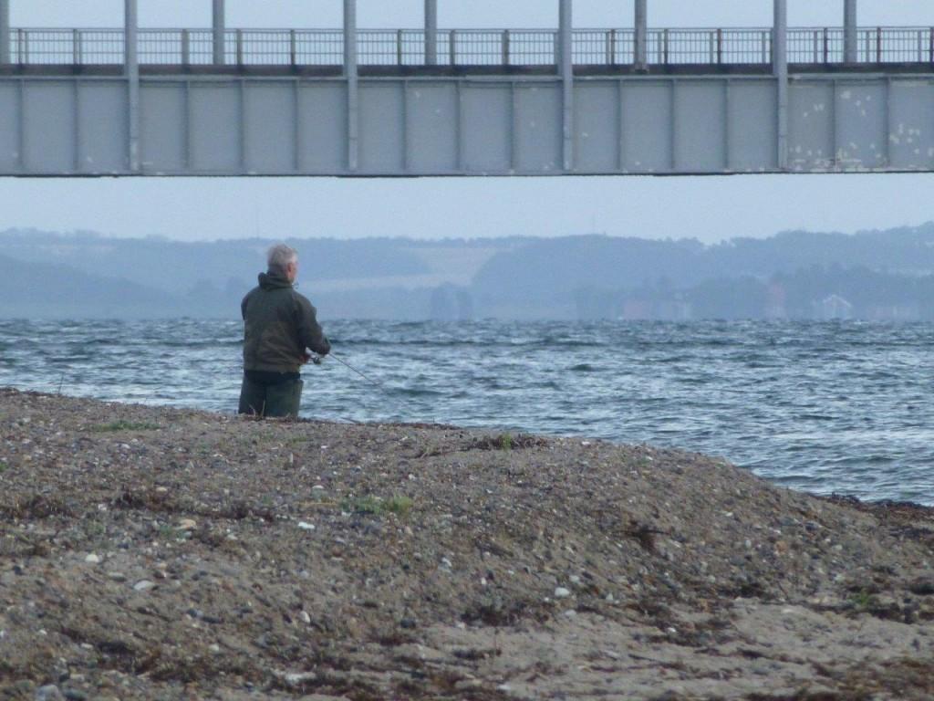 Kystfisker med Oddesundbroen i baggrunden