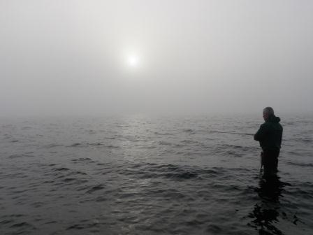 Søren på Røjensøodde
