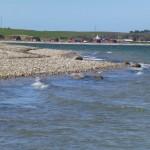 Kigget mod humlum havn