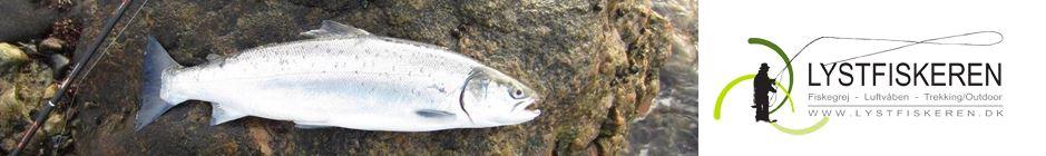 Struer Kystfiskerforening